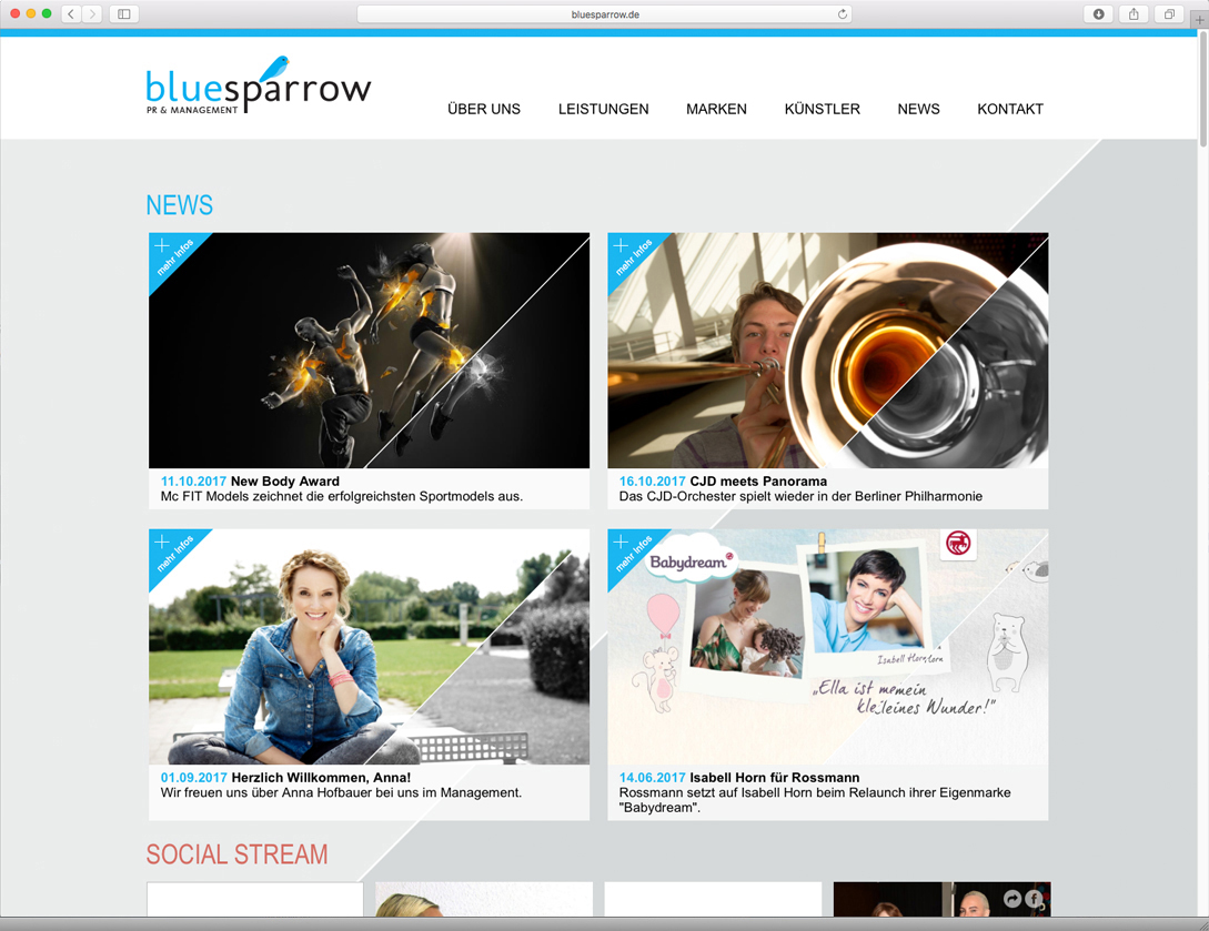 Blue-Sparrow-Home